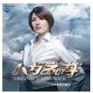 ハガネの女 DVD-BOX season1+2